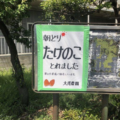 @oosawanouen.tokyo さんの朝採れたけのこ✨3